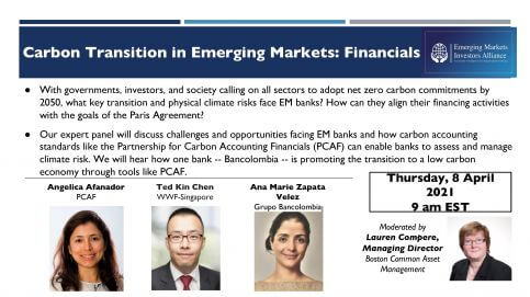Carbon Transition in Emerging Markets: Financials